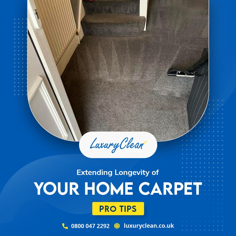 5 Pro Tips to Extend the Lifetime of Your Home Carpet