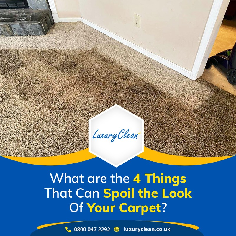 What Are the 4 Things that Can Spoil the Look of Your Carpet