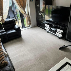 5 Essential Tips for Carpet Care and Maintenance